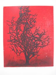 Ihailen sinua, etsaus akvatinta, 22 x 26cm, 2009