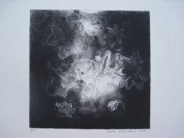 Syväymmärrystä, etsaus akvatinta, 22 x 22,5, 2009