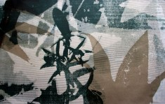 Frame, serigrafia, 70x40cm 2012
